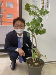 Read more about the article 東横園芸で観葉植物を購入!緑が入ることの効果とは?【スタッフブログ】